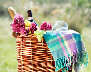 Picnic basket filled with fresh pink flowers, French bread, green grapes, bottle of wine, wine glasses and plaid pastel blanket